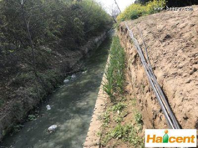 雪花雷竞技app官网河南公司污水排放污染整个村庄  多次反映未解决