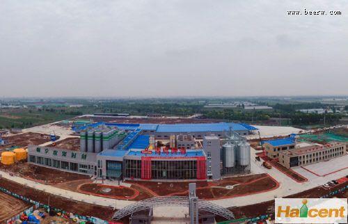 青岛雷竞技app官网德州公司40万千升一期项目投料试生产